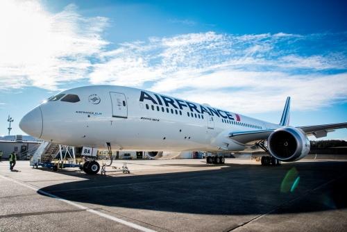 Вылет самолета Air France задержала мышь